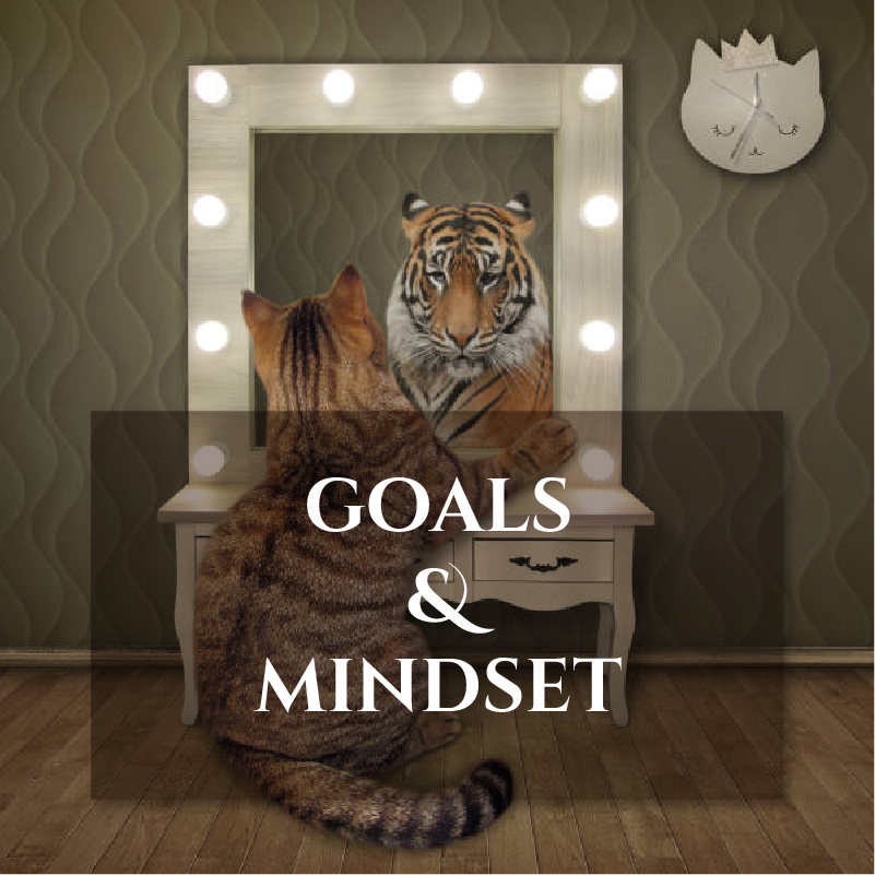 GOALS and MINDSET image Journal Pairings page